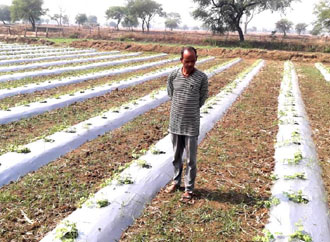 Renewable Energy - Reusing energies through drip irrigation